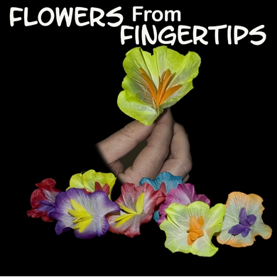 Flowers from Fingertip Silk
