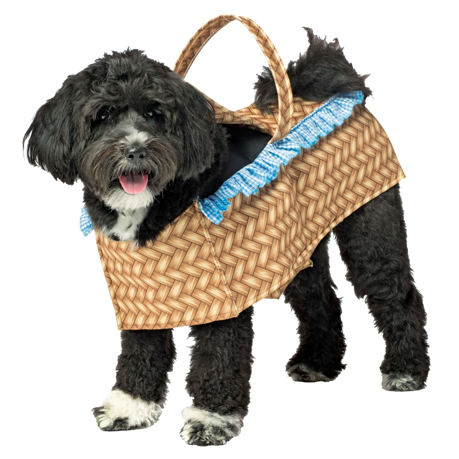 DOG COSTUME BASKET MED